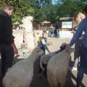 Zoo_20092000016