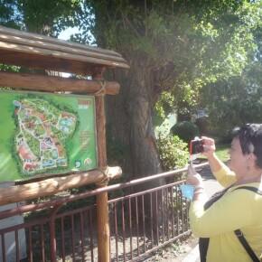 Zoo_20092000027